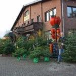 20131202_Weihnachtsbaeume (2)