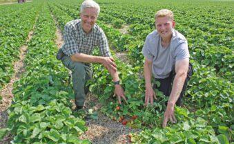 Jetzt ist die beste Zeit für Erdbeer-Marmelade